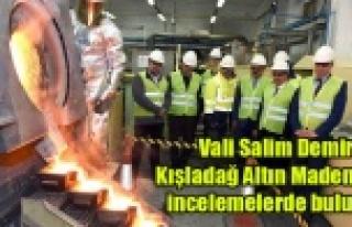 Vali Salim Demir Kışladağ Altın Madeninde incelemelerde...