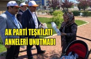 AK PARTİ TEŞKİLATI ANNELERİ UNUTMADI