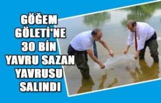 GÖĞEM GÖLETİ'NE 30 BİN YAVRU SAZAN YAVRUSU...