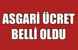 2019 YILI İÇİN ASGARİ ÜCRET BELLİ OLDU