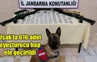 Uşak'ta 616 adet uyuşturucu hap ele geçirildi