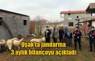 Uşak'ta jandarma 3 aylık bilançoyu açıkladı: