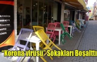 UŞAK'TA KORONOVİRÜS TEDBİRLERİ SOKAKLARI...