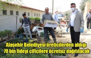Alaşehir Belediyesi üreticilerden aldığı 70 bin...