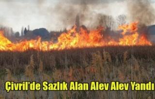 Çivril'de Sazlık alan alev alev yandı