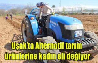 Uşak'ta Alternatif tarım ürünlerine kadın...
