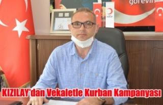 KIZILAY'dan  Vekaletle Kurban Kampanyası