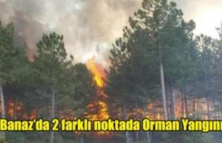 Banaz'da 2 farklı noktada Orman Yangını Çıktı