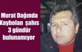 Murat Dağından kaybolan şahıs 3 gündür bulunamıyor