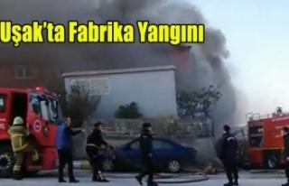 UŞAK OSB'DE FABRİKA YANGINI, HANLAR TEKSTİLDE...