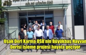 Uşak Deri Karma OSB'nin Büyükbaş Hayvan derisi işleme projesi hayata geçiyor